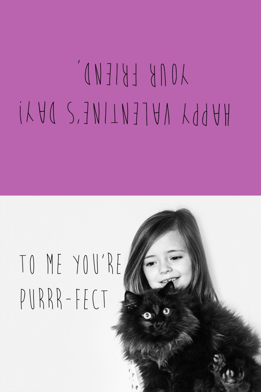 valentinepurrfect